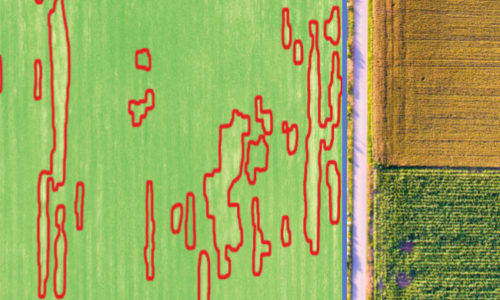Intelinair Empowers Growers with Aerial Imagery Analytics