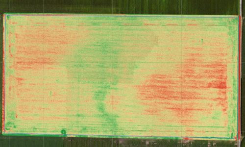 It's All Relative – NDVI That Is. . .