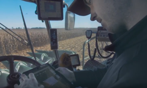 Harvest Timing with Thermal