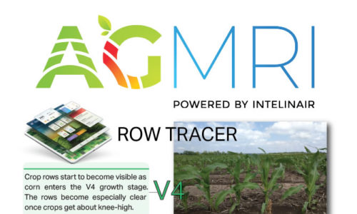 RowTracer Identifies Early Emergence Trouble Spots