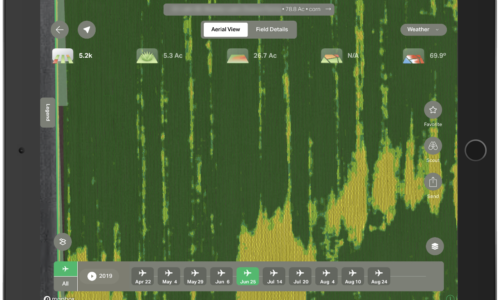 Why Growers Are Turning To Aerial Imagery