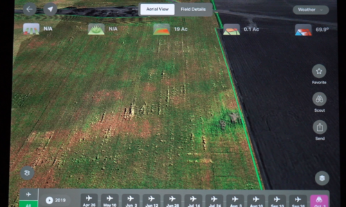 Spot Deterioration Issues to Make Timely Harvest Decisions