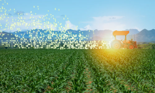 Technology that Empowers Farmers<br>Part One: Imagine the Perfect Solution for Growers