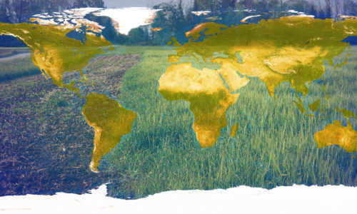 The Trouble with Agriculture<br>Part One: The Big Picture