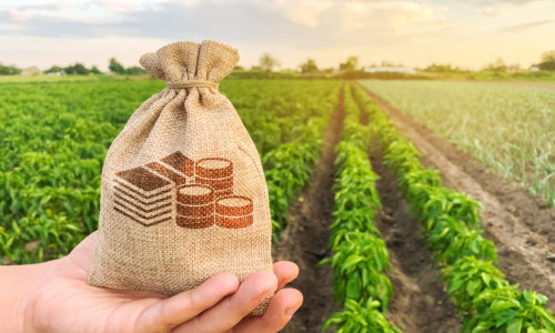 Agriculture's Untapped Profit Potential