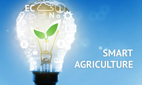 How to Implement an Intelligent Future for Farm Policy