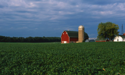An Intelligent Future for Farm Policy