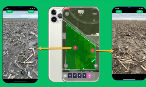 Scout Emergence Issues from your iPhone